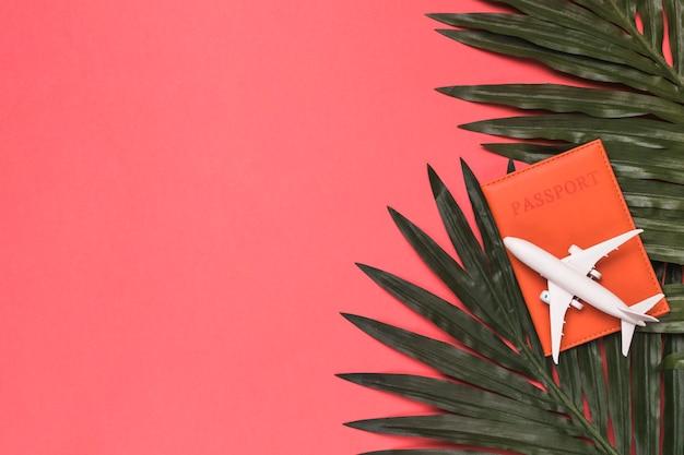 Композиция из игрушечного самолета на паспорт и листья растений