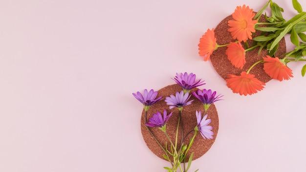トップビューの花と花びら