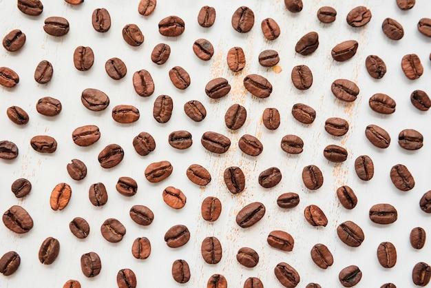 コーヒーの穀物を見る