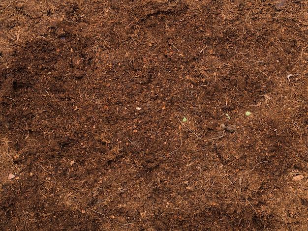 トップビュー土壌