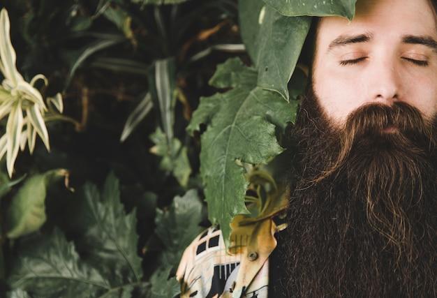 目を閉じて長いひげを持つ男の顔の近くの植物の葉のクローズアップ