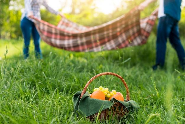ロマンチックなピクニックを持っているカップル