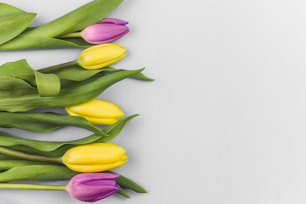 Вид сверху свежих тюльпанов