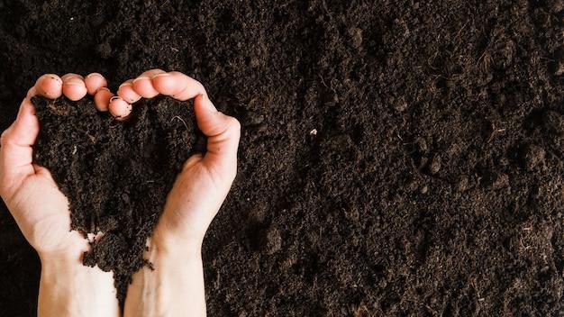 ハートの形で土を持っている女性の手の俯瞰