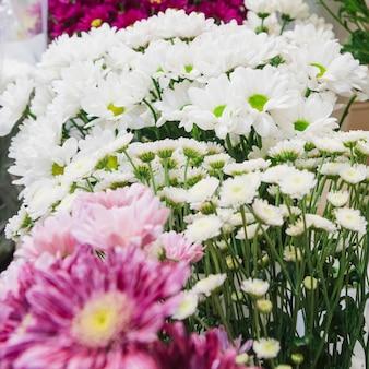 白いデイジーとカモミールの花束の花のクローズアップ