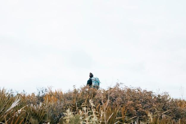 空を背景に山の上に男性ハイカーの背面図