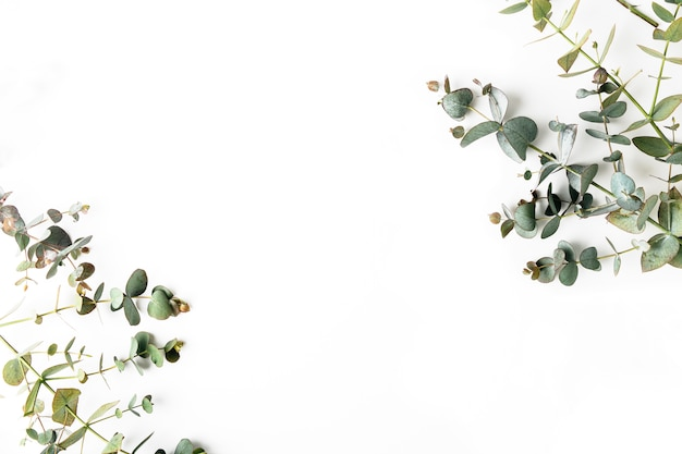 Вид сверху зеленых листьев