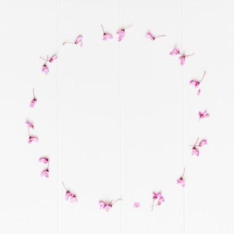 円形の装飾的な花びらの花