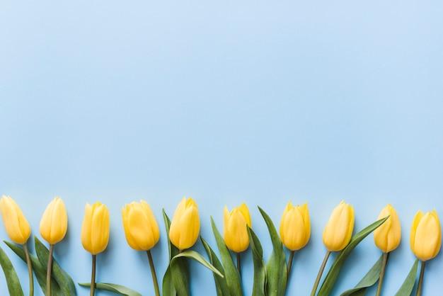 背景に装飾的なカラフルなチューリップの花