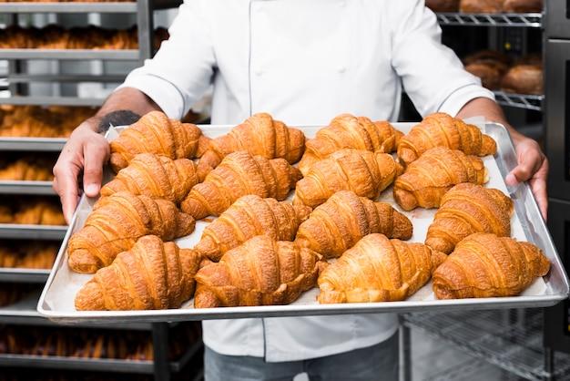 パン屋でクロワッサンの男性のパン屋の手の保持トレイの中央セクション