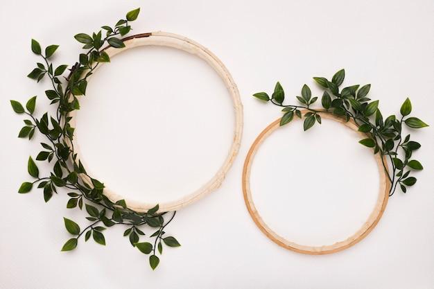 白い背景に緑の葉と大小の木製円形フレーム