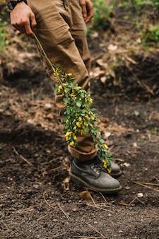 Мужчина держит некоторые полевые цветы в природе