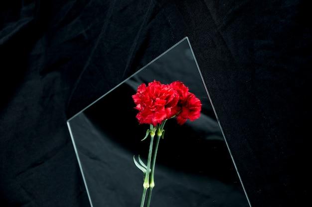 黒の背景上のガラスに美しい赤いカーネーションの花