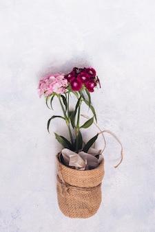 Креативная концепция садоводства