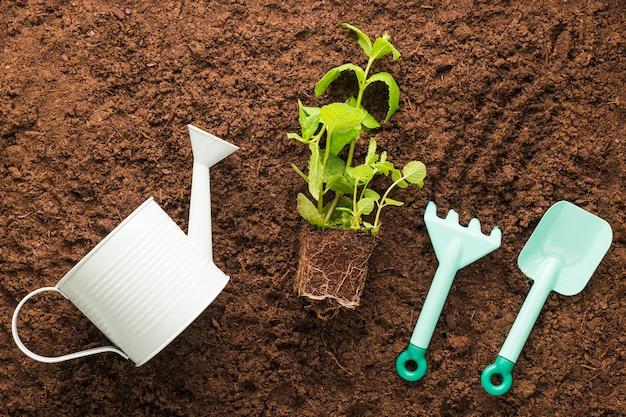 Плоская планировка садовых и садовых инструментов