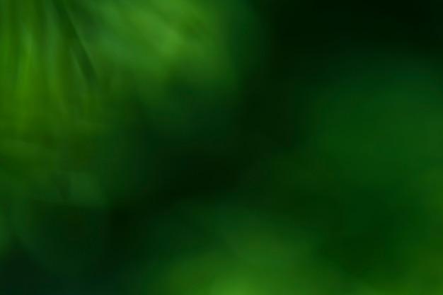 クローズアップのぼやけた植物のテクスチャ