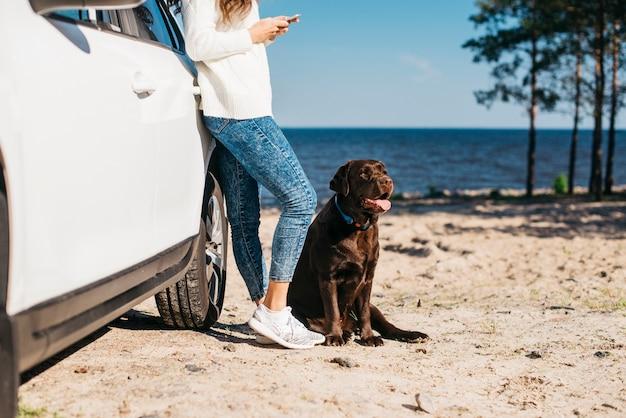 Молодая женщина с ее собакой на пляже