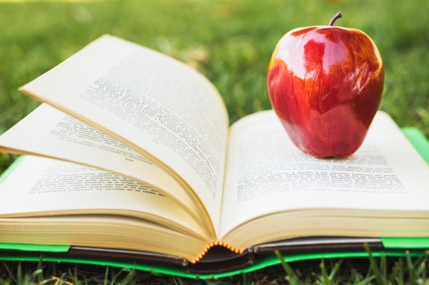 緑のカバーが付いている本に赤いリンゴ
