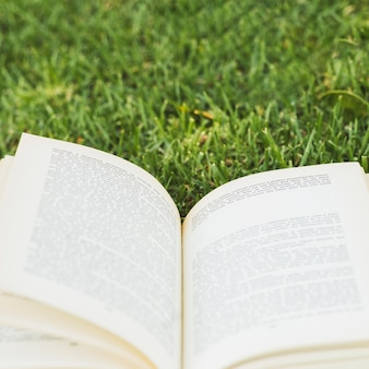 緑の牧草地に開いた本
