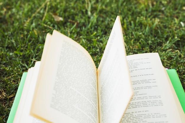 緑の芝生の上の本を開く