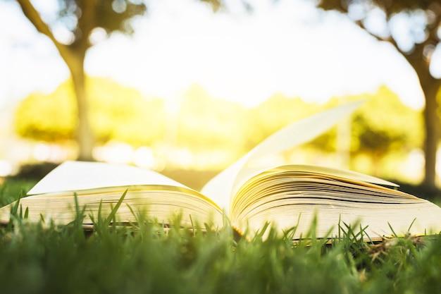 日光の下で緑の芝生の上の本を開いた