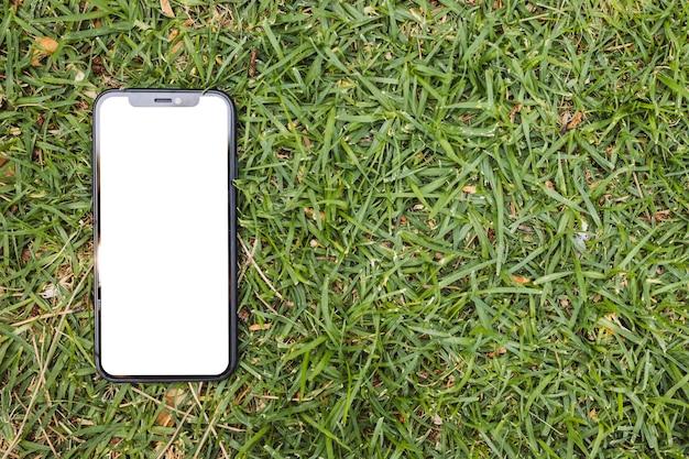 草の上の空白の画面を持つスマートフォン