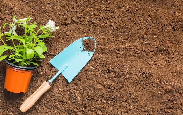 地面に園芸工具のトップビュー