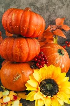 秋の熟したカボチャのコンポジション