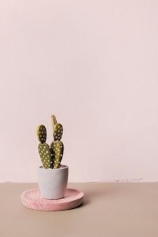 最小限の花瓶の中の装飾的なサボテン