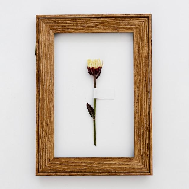 フレーム内の平面図の花