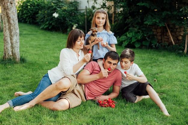 Семья ест свежую красную клубнику на траве в парке