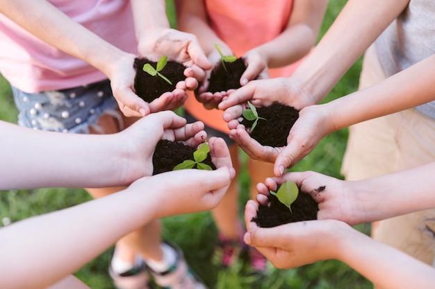 ハイアングルの子供たちがクローバーを植える準備をして