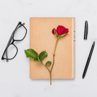 Вид сверху книги и цветка