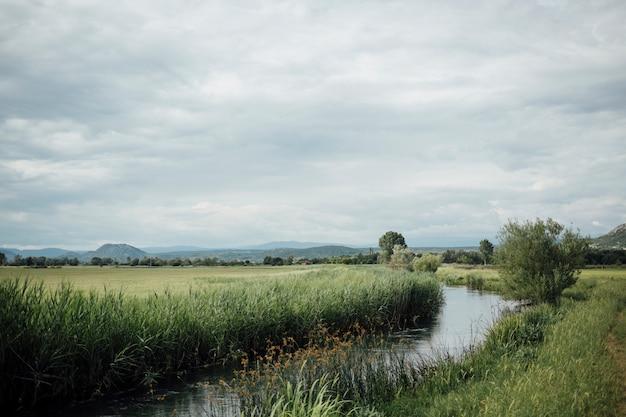 水の流れと緑の牧草地のロングショット