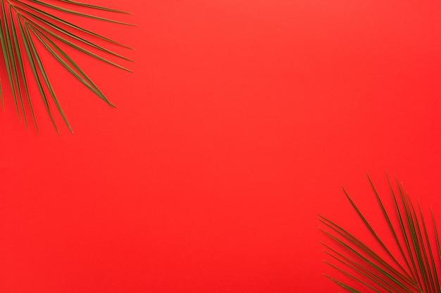 明るい赤の背景の隅にヤシの葉