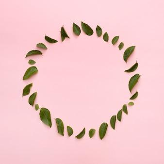 ピンクの背景の上の円形のフレームに配置された美しい葉