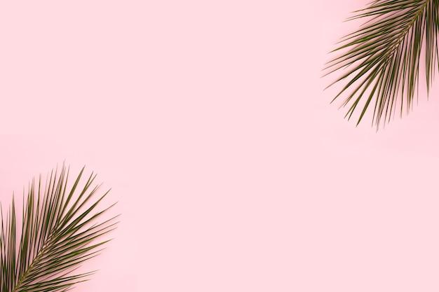 ピンクの背景の隅にヤシの葉