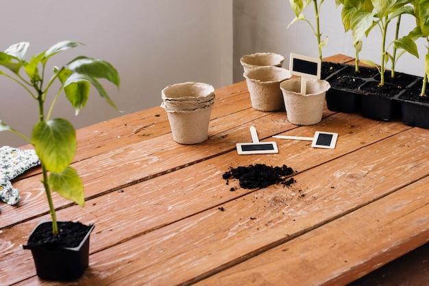 テーブルの上の横に植木鉢