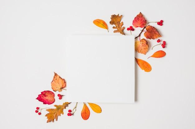 秋の紅葉フレームと空白のコピースペース
