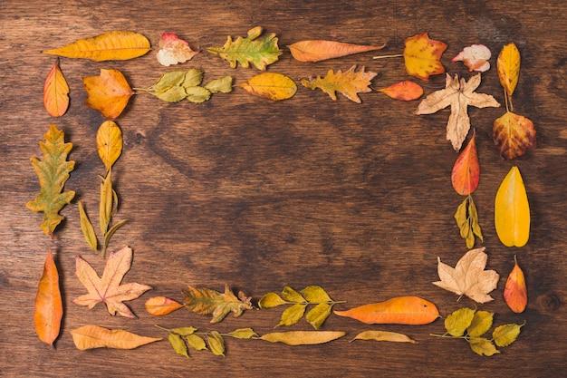 秋の紅葉の木製の背景にダブルフレーム