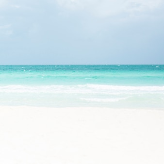 Снимок тропического песчаного пляжа