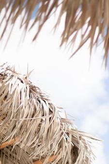 海辺でヤシの傘を閉じる