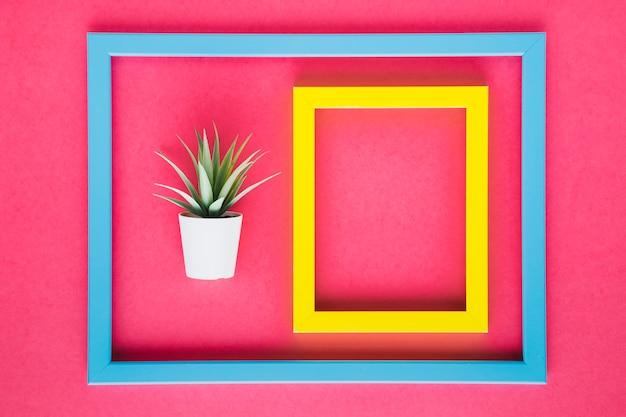 装飾的な植物の横にある黄色の枠