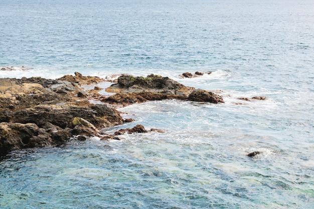 岩の多い海岸でビューの上の波状の水