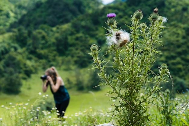 バックグラウンドで写真家と野生の花をクローズアップ