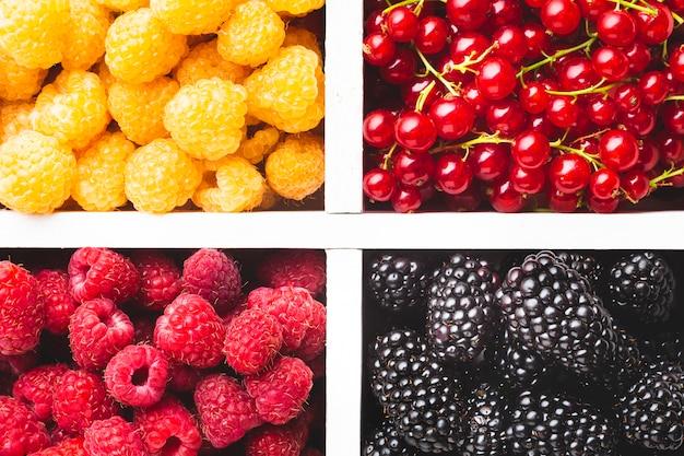 Плоская крупный план свежих ягод в лотке