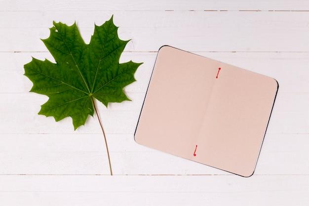 ノートブックコピースペースを持つミニマルなカエデの葉