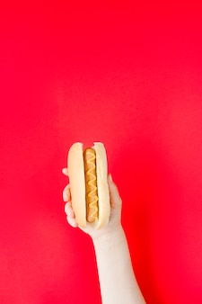 Рука крупным планом держит хот-дог