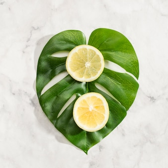 モンステラの葉にレモンのスライス