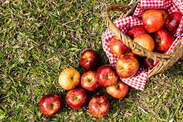 Плоские лежали вкусные красные яблоки в соломенной корзине